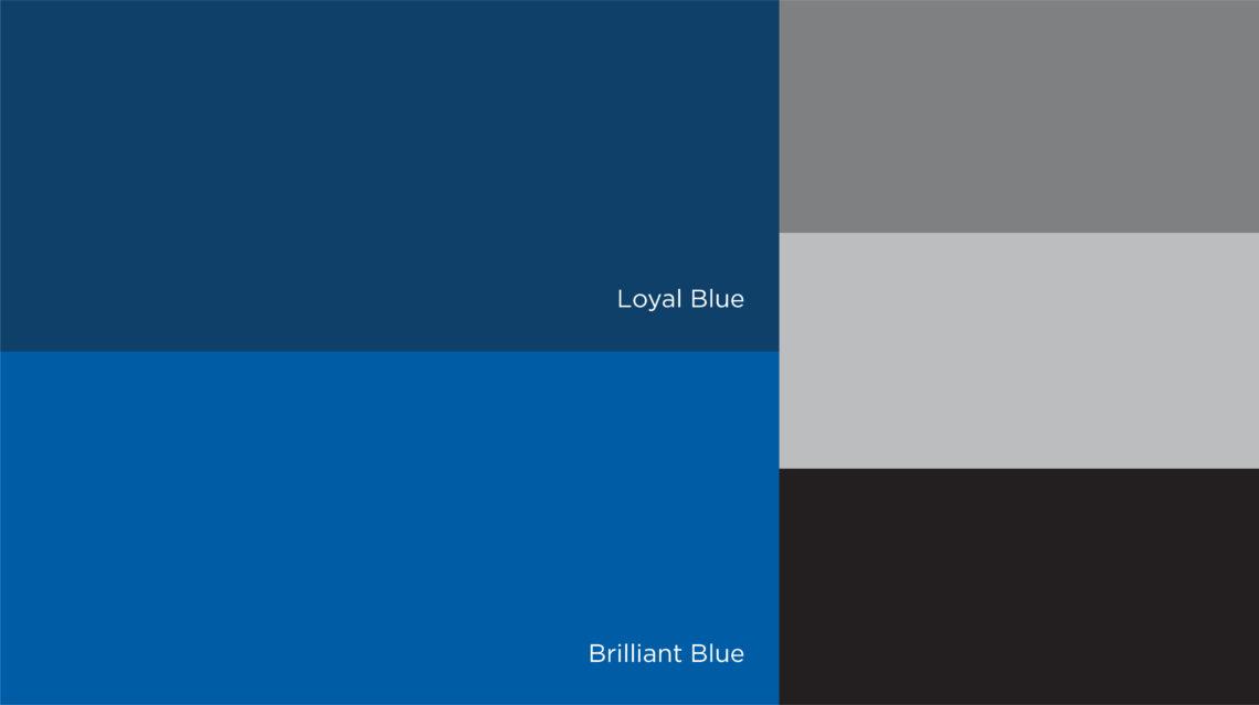 5CG_SRPD_Colors